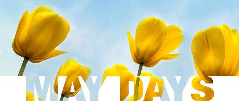 U proleće sve RASTE - samo naše CENE PADAJU!